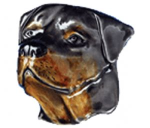 Rottweiler Belt Buckle with display stand. Product code WB2